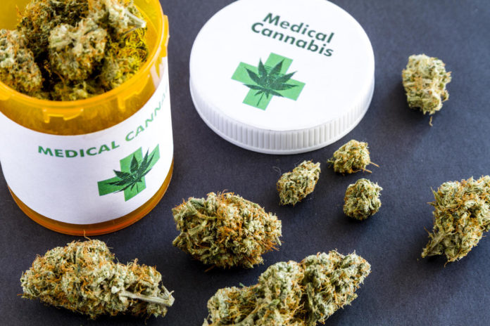 Cannabis, la nueva medicina alternativa